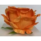 Róża wyrobowa EXCLUSIVE (6-pak) kolor OR10